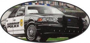 police car plain
