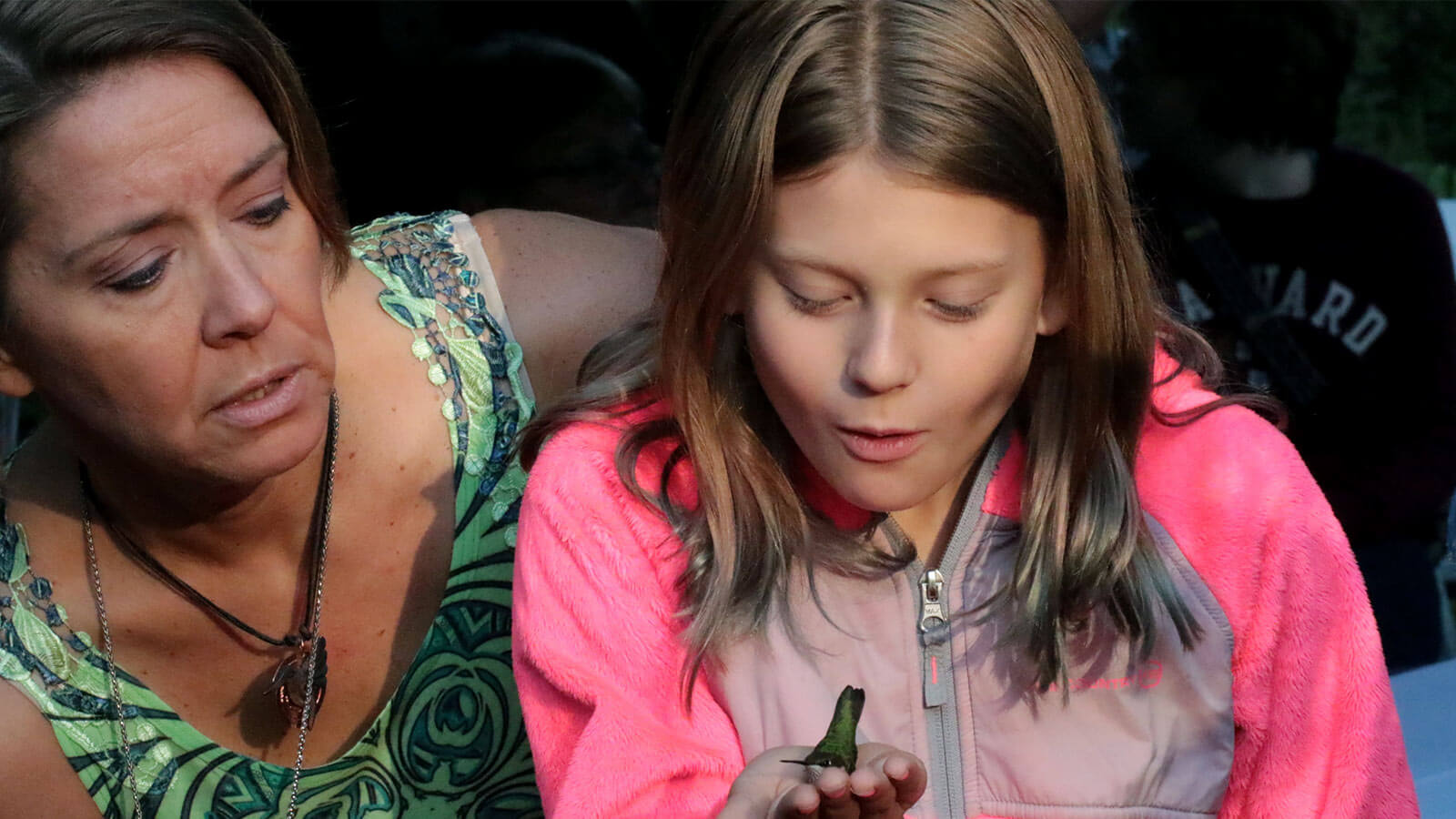 Girl holding hummingbird