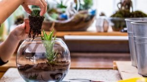 Art in the Park: Terrarium Making @ The General Picnic Pavilion, Swift-Cantrell Park